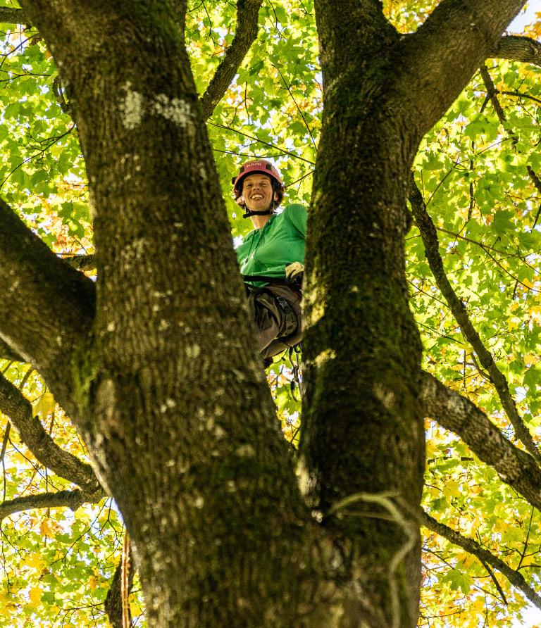 Sabrina Fridriscyk beim Baumfällen.