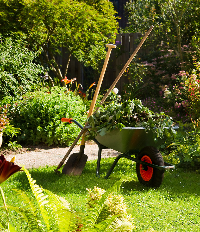Gartenwerkzeuge für die Pflege